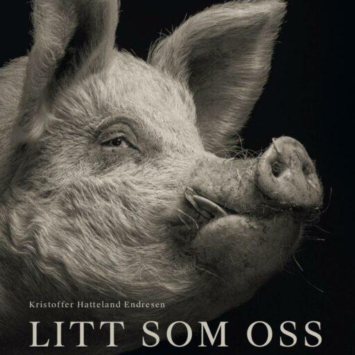 Litt som oss - en fortelling om grisen av Kristoffer Hatteland Endresen